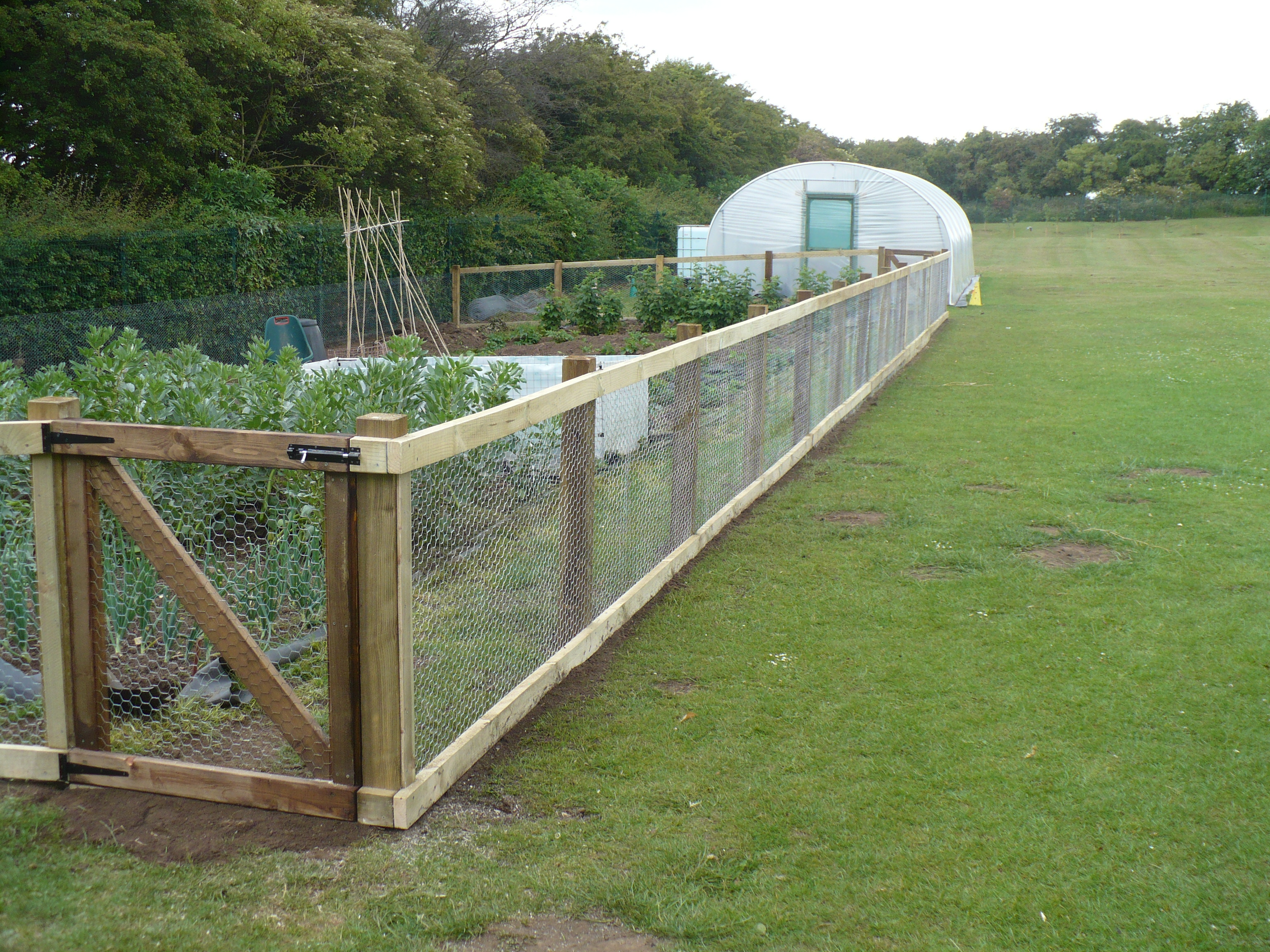Home vegetable garden fence - Greener Places
